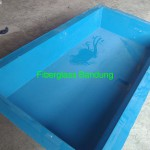 kolam fiber